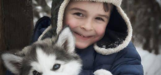 chien avec husky dans les bras